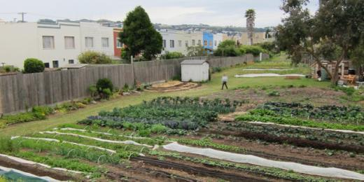 Californiau0027s New Urban Agriculture Property Tax Incentive | SPUR