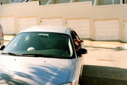 personal car sharing