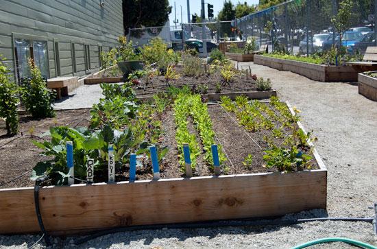 Diy urbanism spur diy gardens solutioingenieria Choice Image