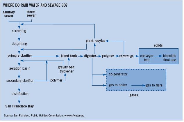 Where do rain water and sewage go?